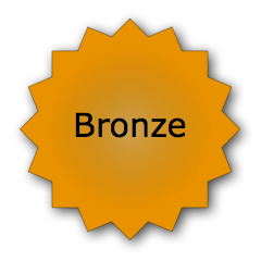 Bronze Hosting Plan