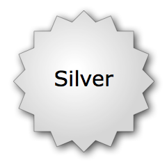 Silver Hosting Plan